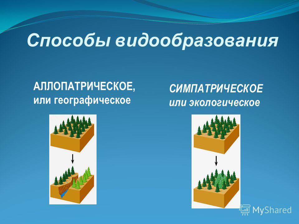Способы видообразования АЛЛОПАТРИЧЕСКОЕ, или географическое СИМПАТРИЧЕСКОЕ или экологическое