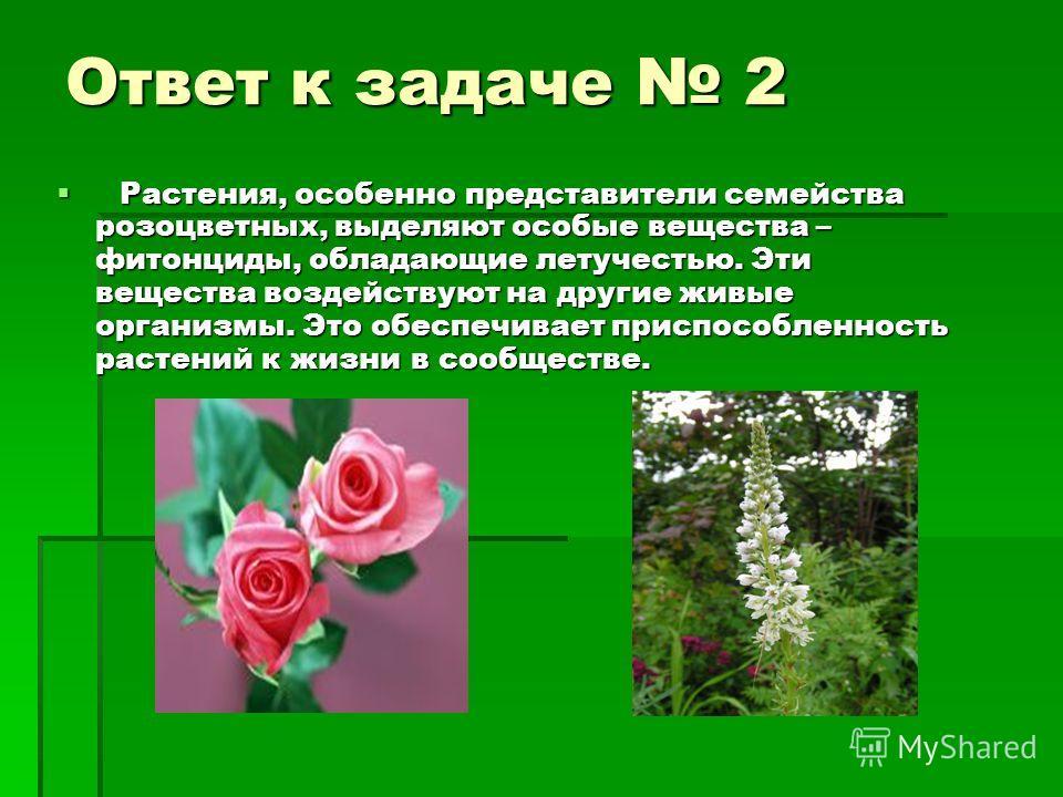 Ответ к задаче 2 Растения, особенно представители семейства розоцветных, выделяют особые вещества – фитонциды, обладающие летучестью. Эти вещества воздействуют на другие живые организмы. Это обеспечивает приспособленность растений к жизни в сообществ