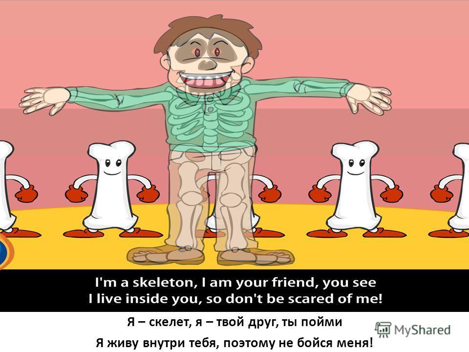 Я – скелет, я – твой друг, ты пойми Я живу внутри тебя, поэтому не бойся меня!