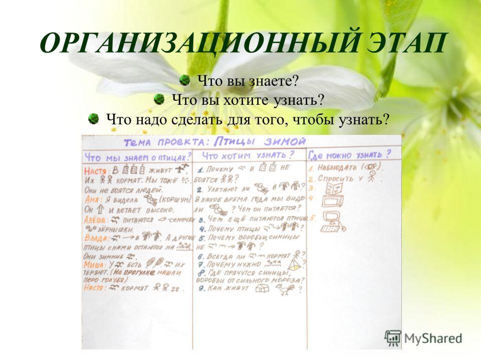 ОРГАНИЗАЦИОННЫЙ ЭТАП Что вы знаете? Что вы хотите узнать? Что надо сделать для того, чтобы узнать?