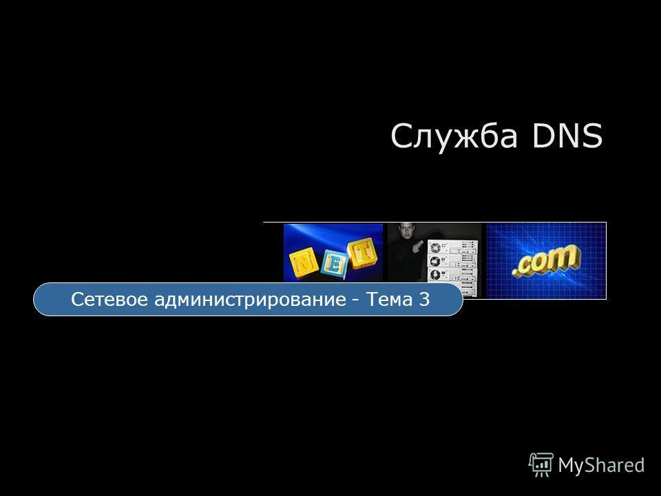 Служба DNS Сетевое администрирование - Тема 3