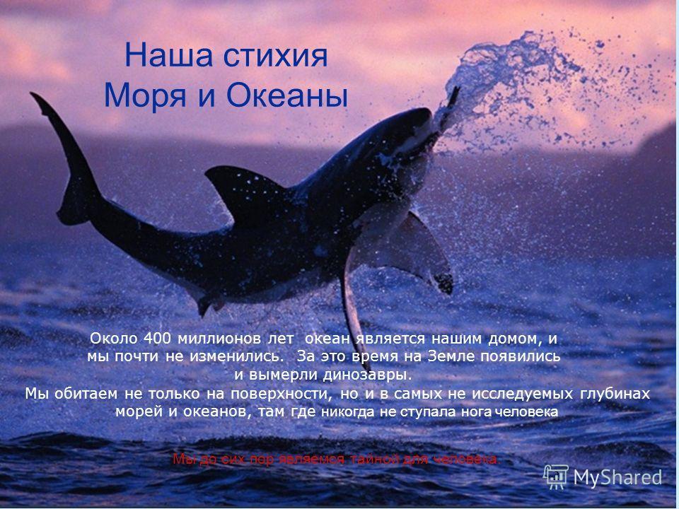 2 Около 400 миллионов лет океан является нашим домом, и мы почти не изменились. За это время на Земле появились и вымерли динозавры. Мы обитаем не только на поверхности, но и в самых не исследуемых глубинах морей и океанов, там где никогда не ступала