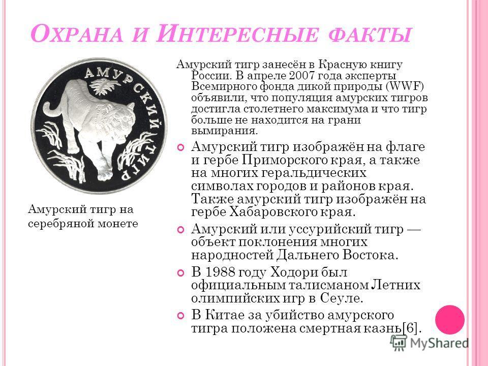 О ХРАНА И И НТЕРЕСНЫЕ ФАКТЫ Амурский тигр занесён в Красную книгу России. В апреле 2007 года эксперты Всемирного фонда дикой природы (WWF) объявили, что популяция амурских тигров достигла столетнего максимума и что тигр больше не находится на грани в