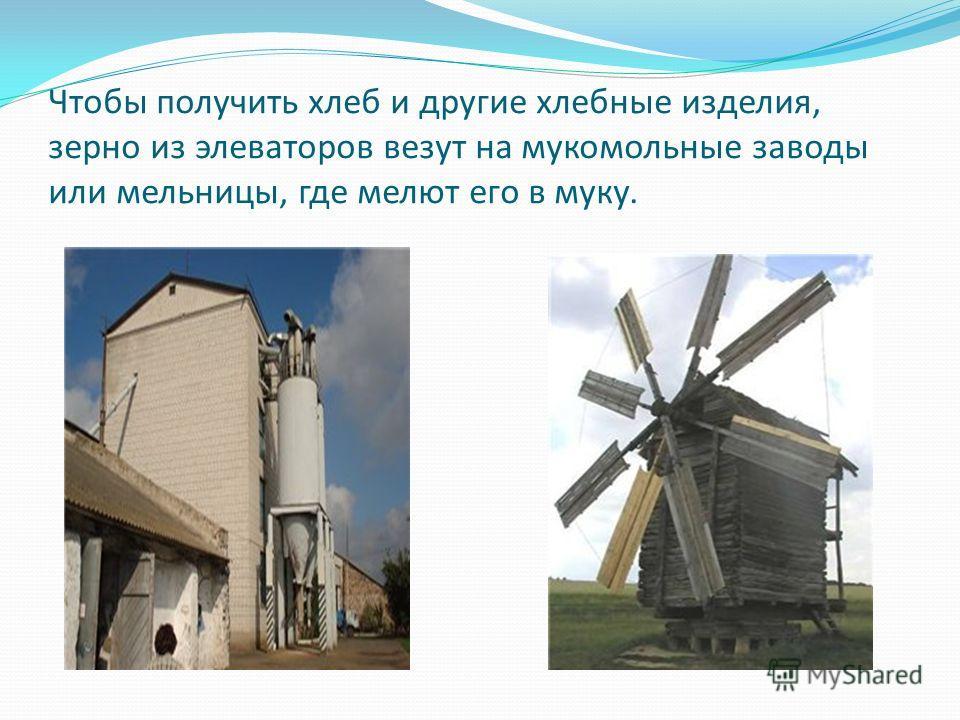 Чтобы получить хлеб и другие хлебные изделия, зерно из элеваторов везут на мукомольные заводы или мельницы, где мелют его в муку.