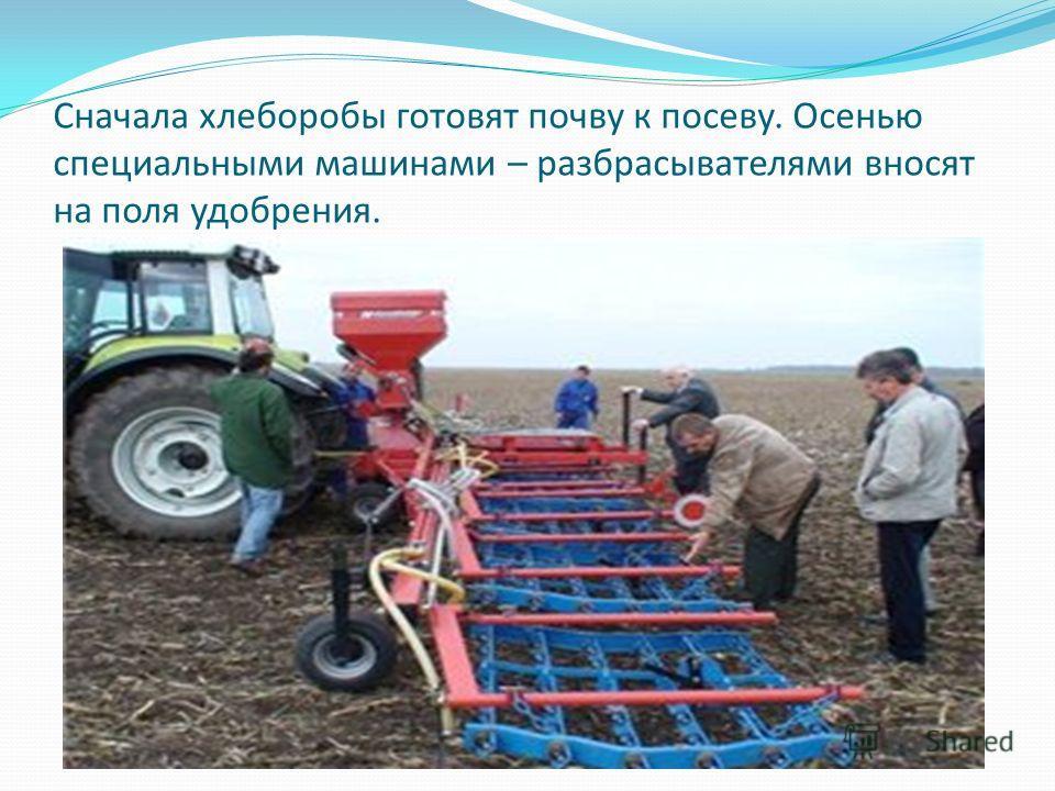 Сначала хлеборобы готовят почву к посеву. Осенью специальными машинами – разбрасывателями вносят на поля удобрения.