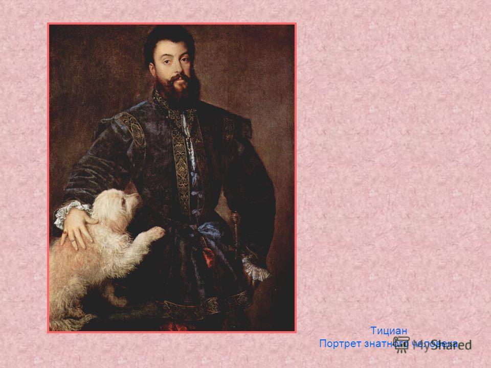 Тициан Портрет знатного человека