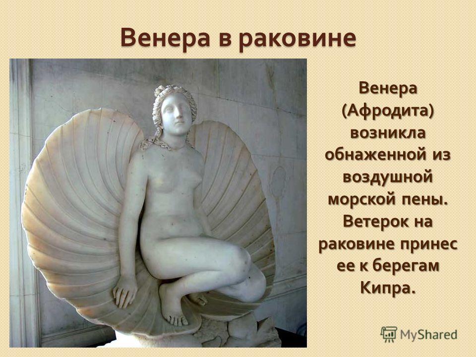 Венера в раковине Венера ( Афродита ) возникла обнаженной из воздушной морской пены. Ветерок на раковине принес ее к берегам Кипра.