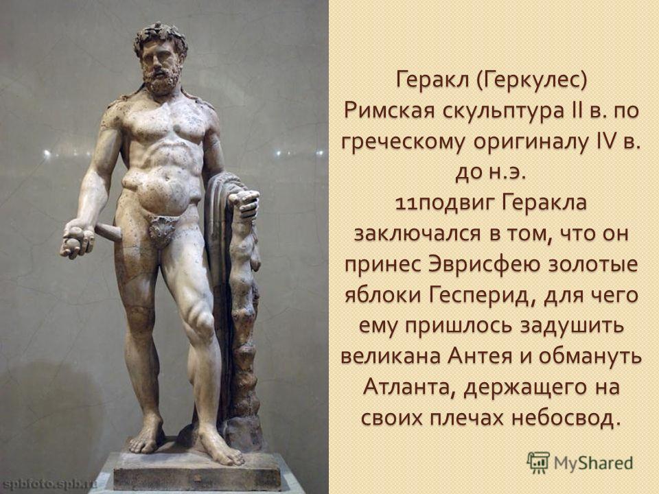Геракл ( Геркулес ) Римская скульптура II в. по греческому оригиналу IV в. до н. э. 11 подвиг Геракла заключался в том, что он принес Эврисфею золотые яблоки Гесперид, для чего ему пришлось задушить великана Антея и обмануть Атланта, держащего на сво
