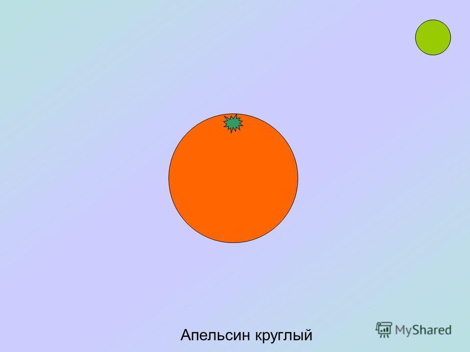 Колесо похоже на круг