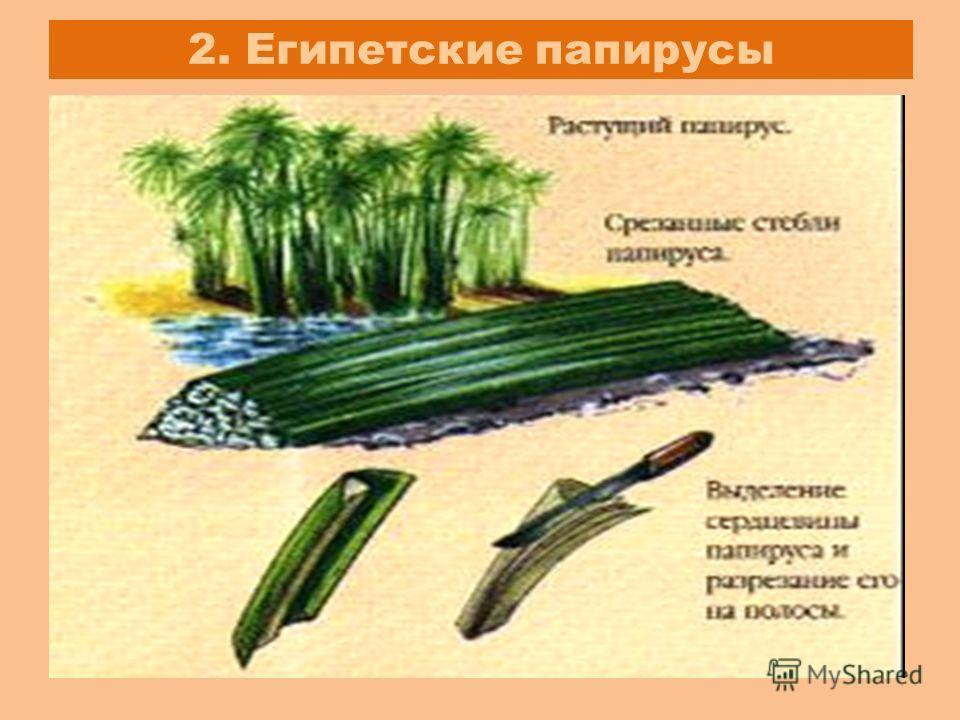 2. Египетские папирусы