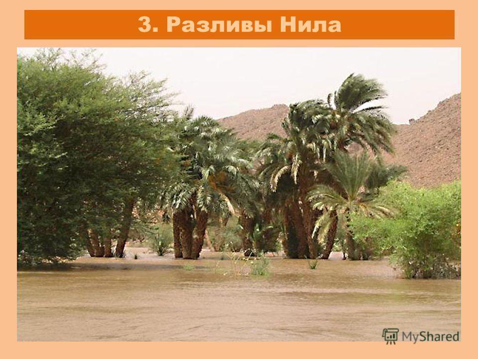 3. Разливы Нила
