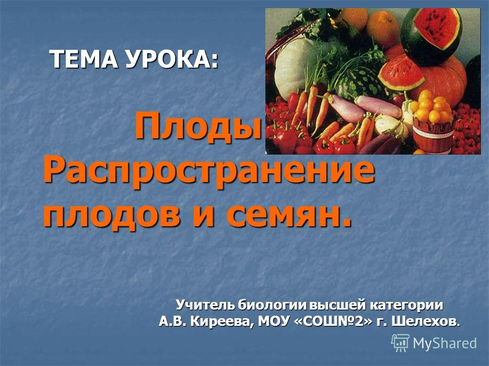 ТЕМА УРОКА: Плоды. Распространение плодов и семян. ТЕМА УРОКА: Плоды. Распространение плодов и семян. Учитель биологии высшей категории А.В. Киреева, МОУ «СОШ2» г. Шелехов.