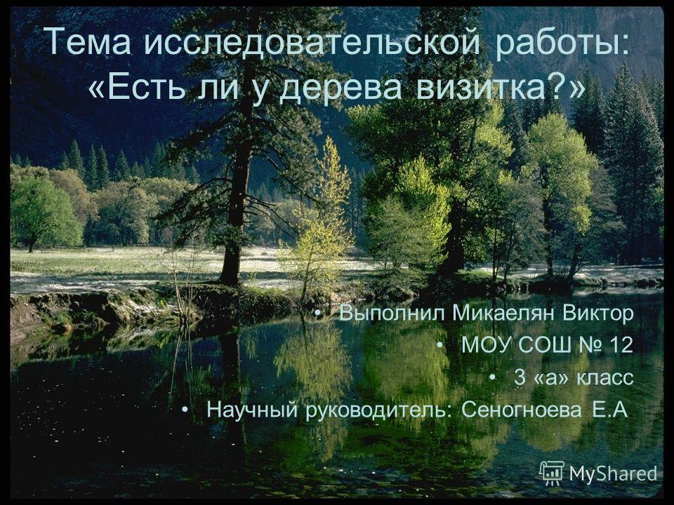 Тема исследовательской работы: «Есть ли у дерева визитка?» Выполнил Микаелян Виктор МОУ СОШ 12 3 «а» класс Научный руководитель: Сеногноева Е.А.