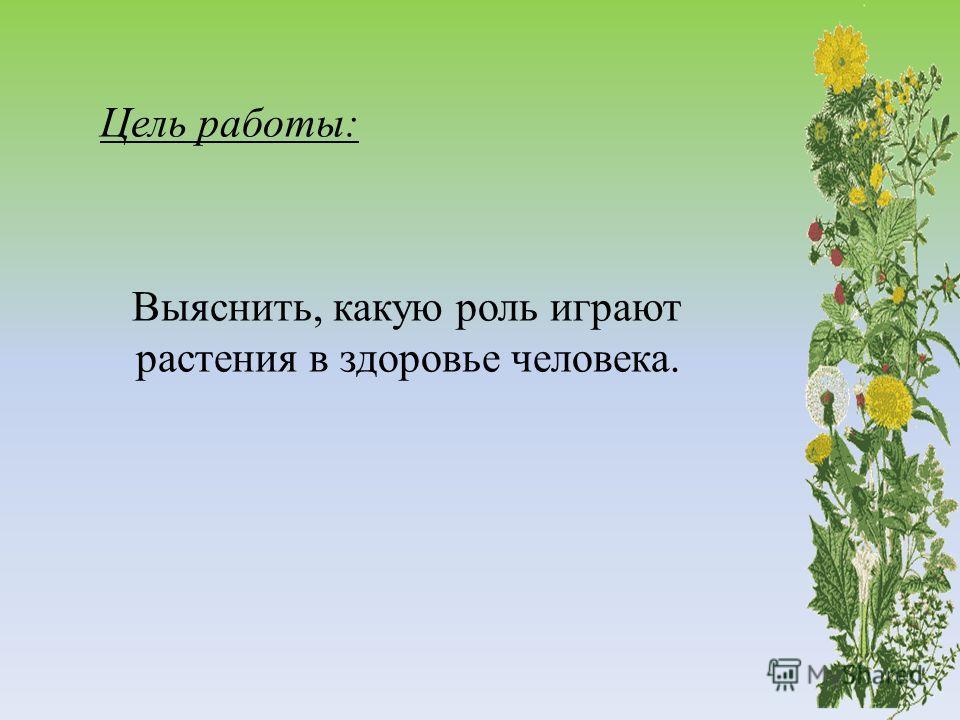Цель работы: Выяснить, какую роль играют растения в здоровье человека.
