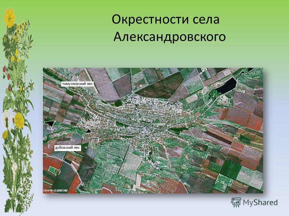 Окрестности села Александровского