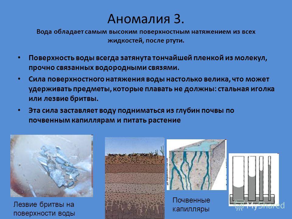 Аномалия 3. Вода обладает самым высоким поверхностным натяжением из всех жидкостей, после ртути. Поверхность воды всегда затянута тончайшей пленкой из молекул, прочно связанных водородными связями. Сила поверхностного натяжения воды настолько велика,