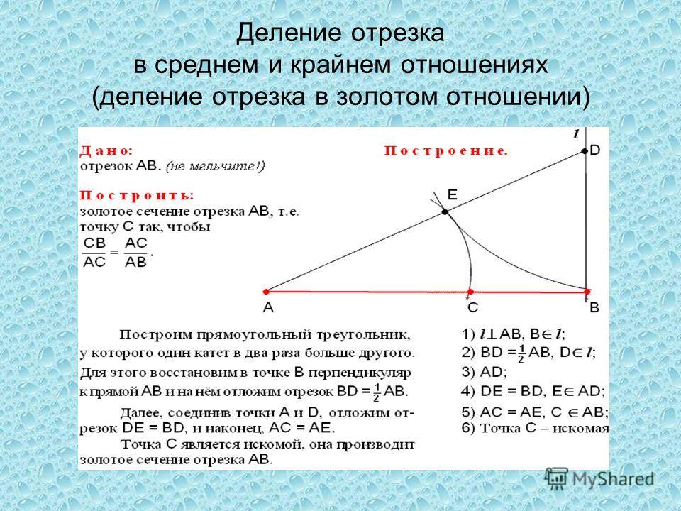 Деление отрезка в среднем и крайнем отношениях (деление отрезка в золотом отношении)