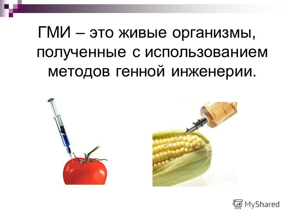 ГМИ – это живые организмы, полученные с использованием методов генной инженерии.