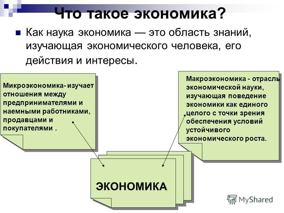 Что такое экономика? Как наука экономика это область знаний, изучающая экономического человека, его действия и интересы. Макроэкономика - отрасль экономической науки, изучающая поведение экономики как единого целого с точки зрения обеспечения условий