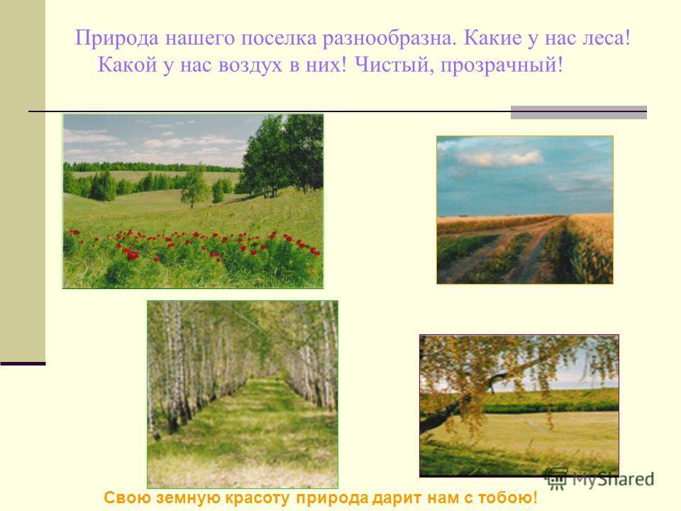 Природа нашего поселка разнообразна. Какие у нас леса! Какой у нас воздух в них! Чистый, прозрачный! Свою земную красоту природа дарит нам с тобою!