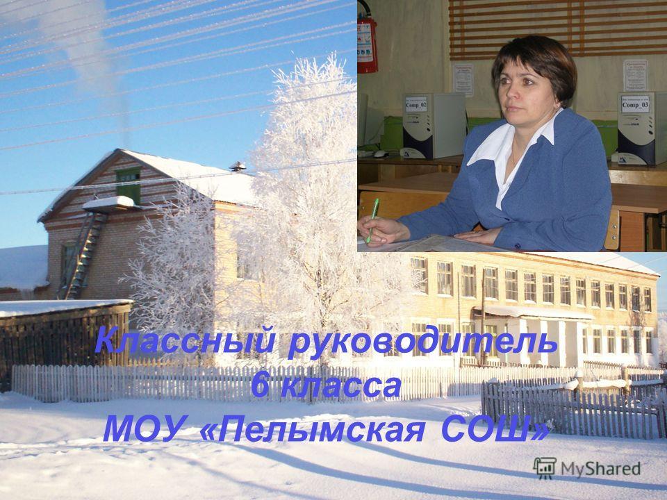 Классный руководитель 6 класса МОУ «Пелымская СОШ»