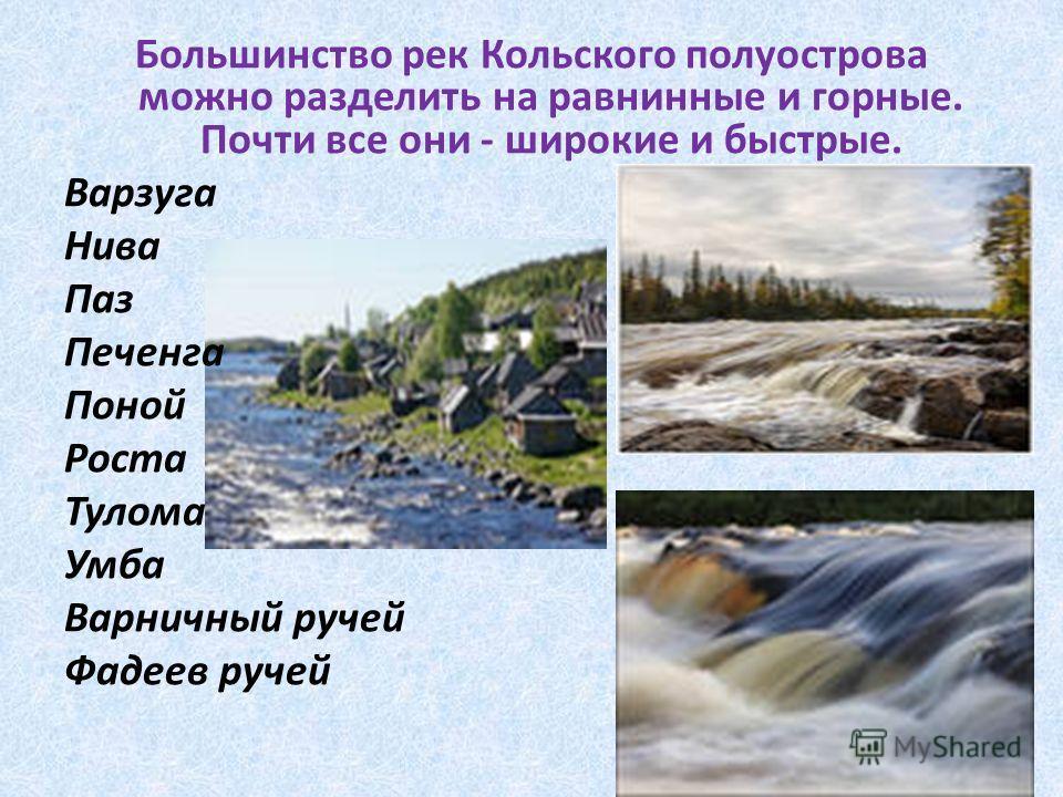 Большинство рек Кольского полуострова можно разделить на равнинные и горные. Почти все они - широкие и быстрые. Варзуга Нива Паз Печенга Поной Роста Тулома Умба Варничный ручей Фадеев ручей