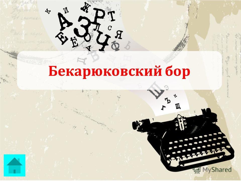 Бекарюковский бор