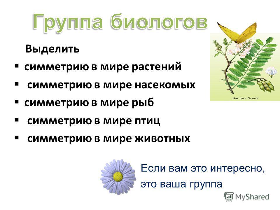 Выделить симметрию в мире растений симметрию в мире насекомых симметрию в мире рыб симметрию в мире птиц симметрию в мире животных Если вам это интересно, это ваша группа
