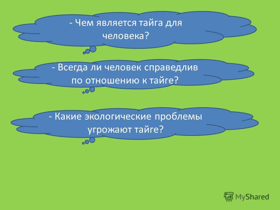 - Чем является тайга для человека? - Всегда ли человек справедлив по отношению к тайге? - Какие экологические проблемы угрожают тайге?