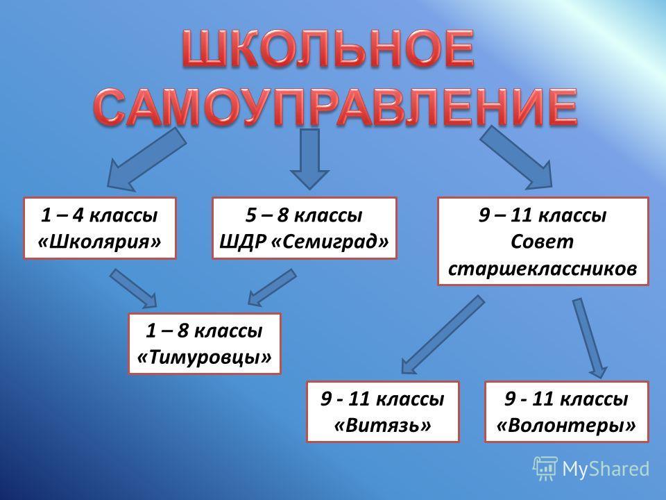 1 – 4 классы «Школярия» 5 – 8 классы ШДР «Семиград» 9 – 11 классы Совет старшеклассников 1 – 8 классы «Тимуровцы» 9 - 11 классы «Волонтеры» 9 - 11 классы «Витязь»