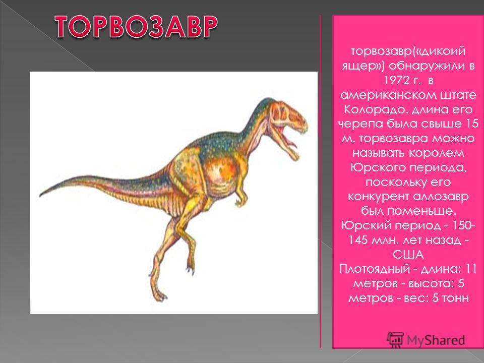 торвозавр(«дикоий ящер») обнаружили в 1972 г. в американском штате Колорадо. длина его черепа была свыше 15 м. торвозавра можно называть королем Юрского периода, поскольку его конкурент аллозавр был поменьше. Юрский период - 150- 145 млн. лет назад -