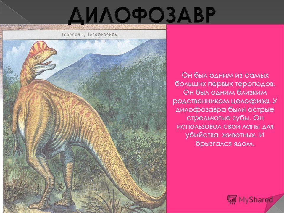 Он был одним из самых больших первых тероподов. Он был одним близким родственником целофиза. У дилофозавра были острые стрельчатые зубы. Он использовал свои лапы для убийства животных. И брызгался ядом.