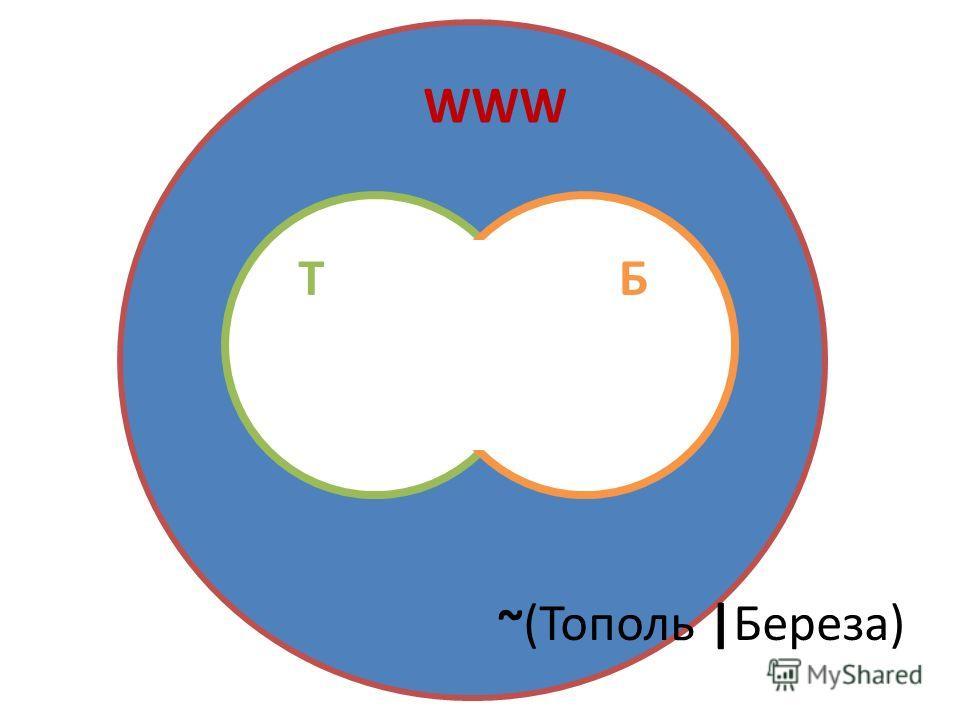 WWW ТБ ~(Тополь |Береза)