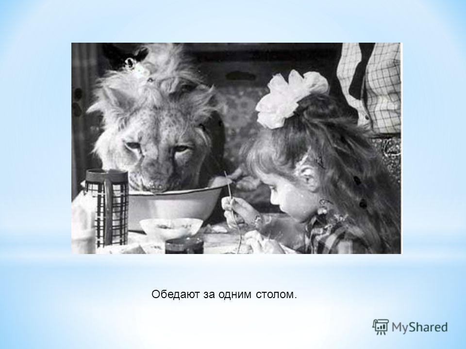Обедают за одним столом.
