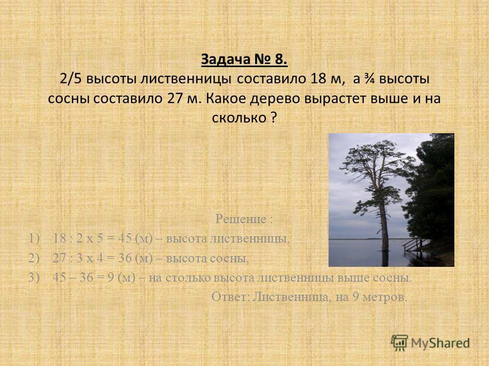Задача 8. 2/5 высоты лиственницы составило 18 м, а ¾ высоты сосны составило 27 м. Какое дерево вырастет выше и на сколько ? Решение : 1)18 : 2 х 5 = 45 (м) – высота лиственницы, 2)27 : 3 х 4 = 36 (м) – высота сосны, 3)45 – 36 = 9 (м) – на столько выс