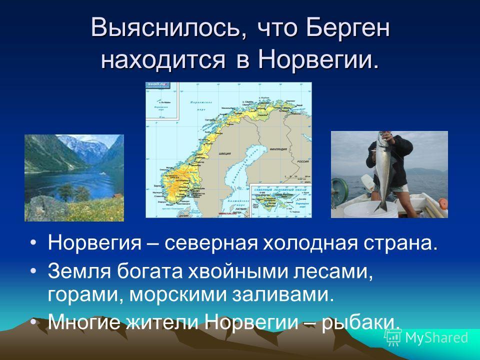 Выяснилось, что Берген находится в Норвегии. Норвегия – северная холодная страна. Земля богата хвойными лесами, горами, морскими заливами. Многие жители Норвегии – рыбаки.