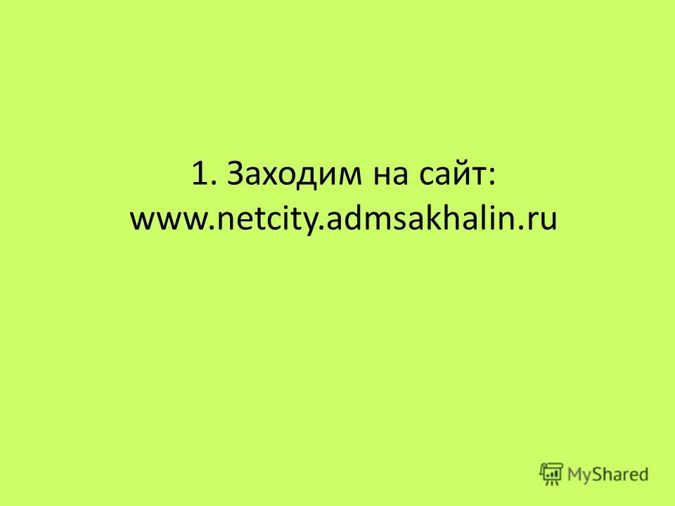 1. Заходим на сайт: www.netcity.admsakhalin.ru