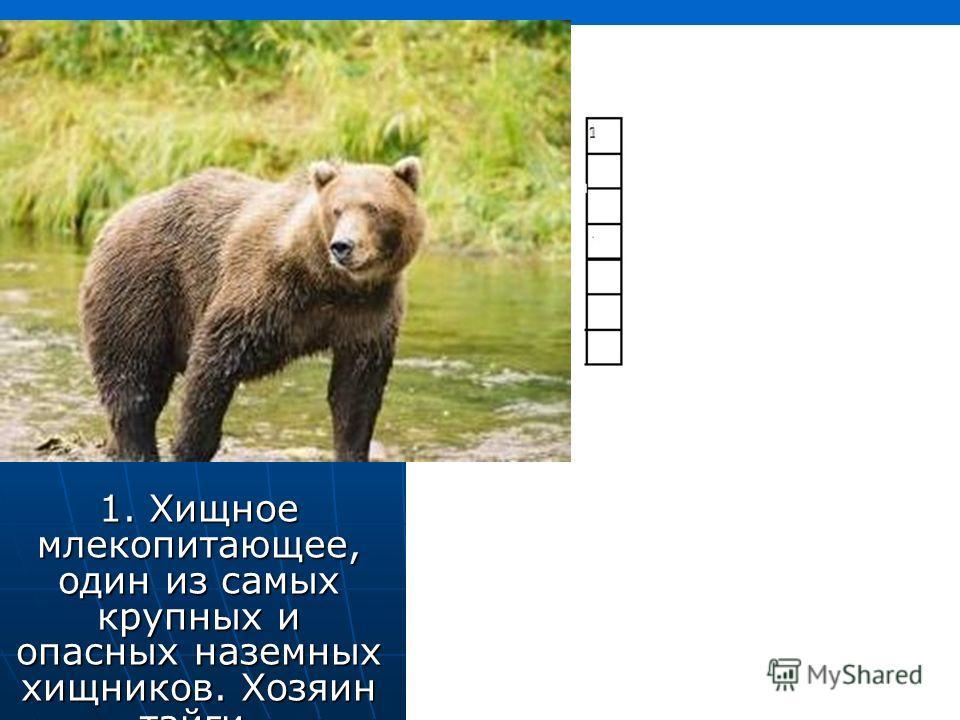 1. Хищное млекопитающее, один из самых крупных и опасных наземных хищников. Хозяин тайги.