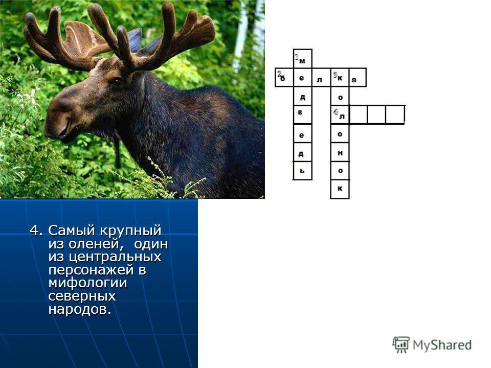 4. Самый крупный из оленей, один из центральных персонажей в мифологии северных народов. 4. Самый крупный из оленей, один из центральных персонажей в мифологии северных народов.