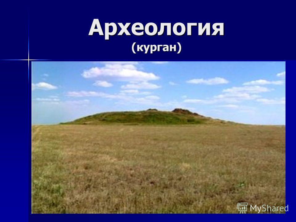 Археология (курган)