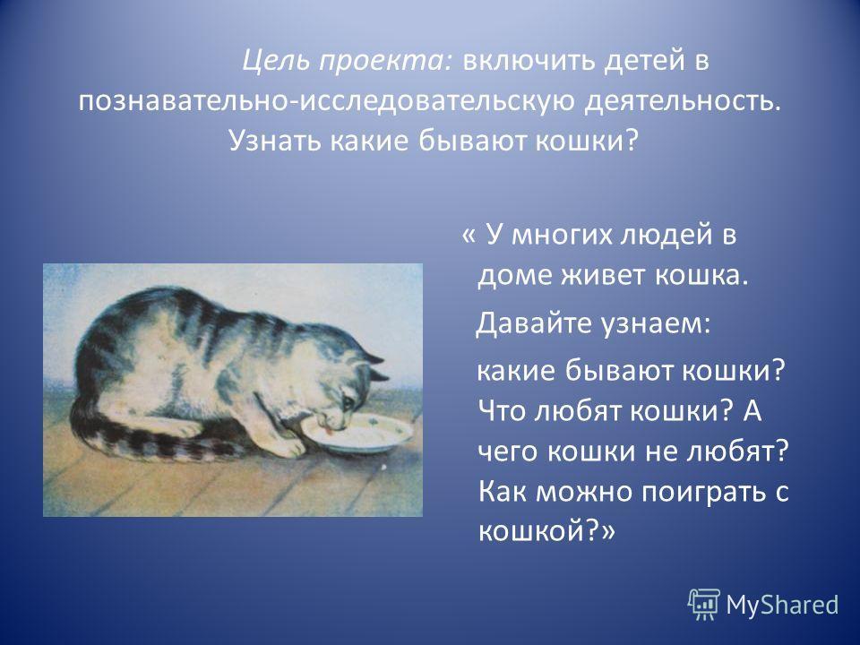 Цель проекта: включить детей в познавательно-исследовательскую деятельность. Узнать какие бывают кошки? « У многих людей в доме живет кошка. Давайте узнаем: какие бывают кошки? Что любят кошки? А чего кошки не любят? Как можно поиграть с кошкой?»