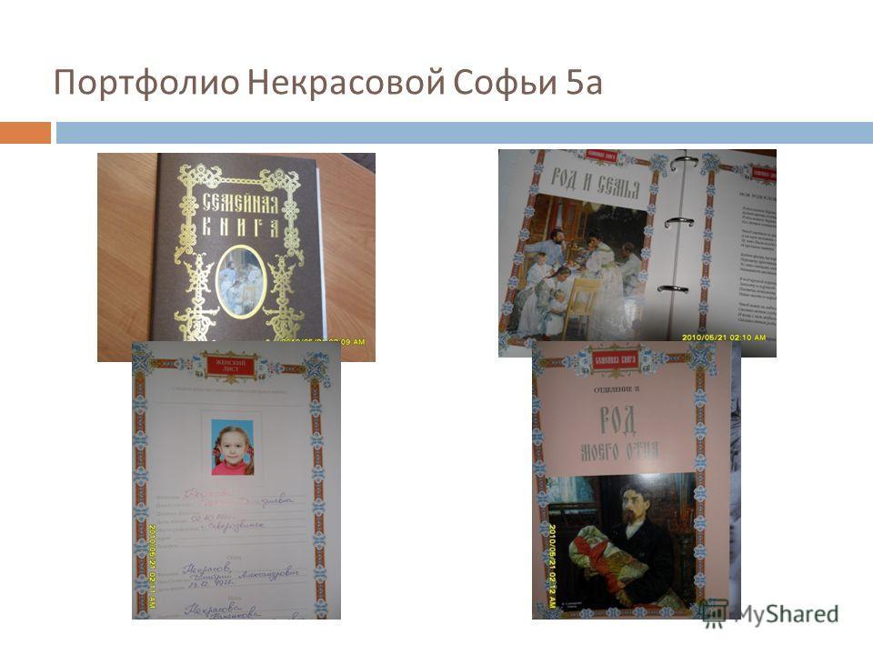 Портфолио Некрасовой Софьи 5 а