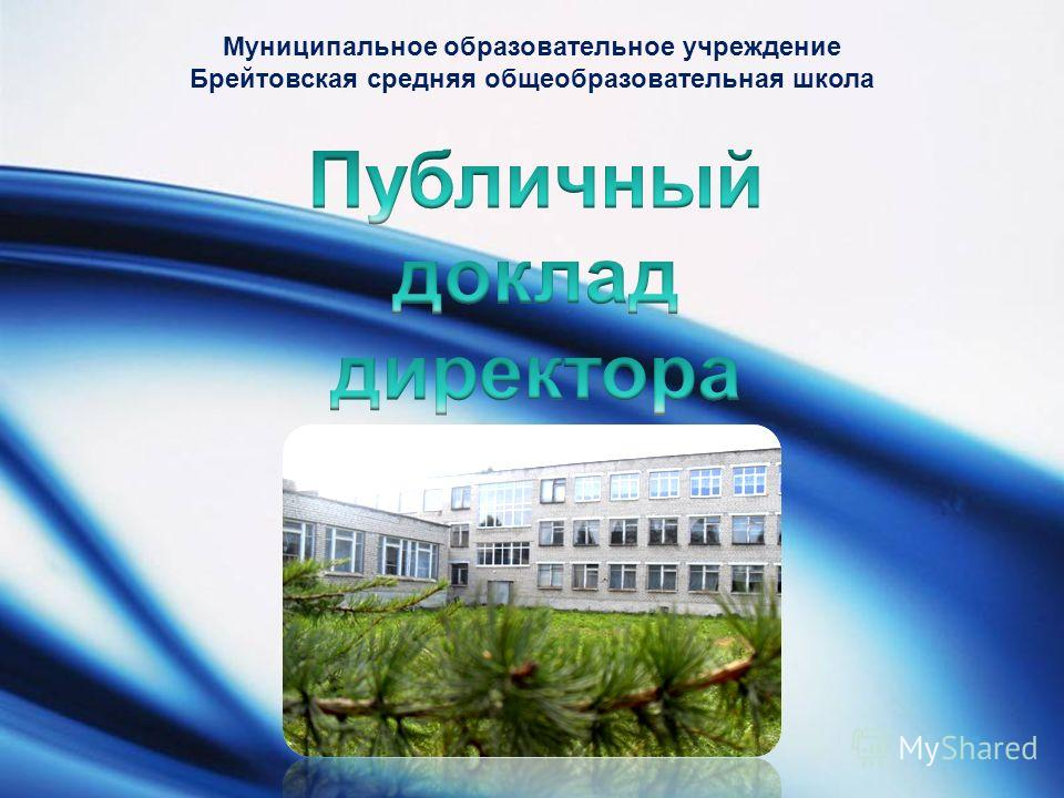 LOGO Муниципальное образовательное учреждение Брейтовская средняя общеобразовательная школа