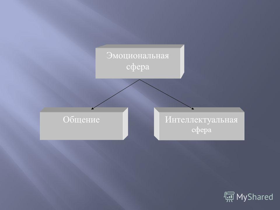 Эмоциональная сфера Интеллектуальная сфера Общение