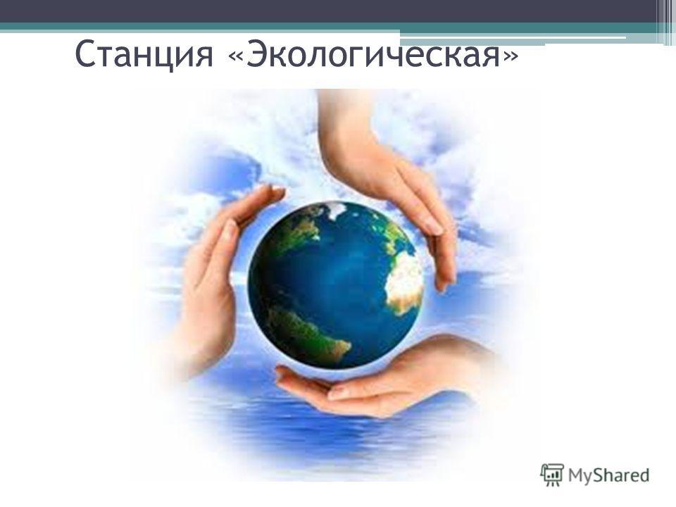 Станция «Экологическая»