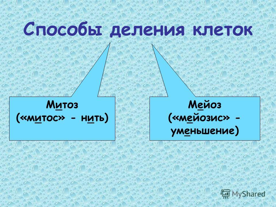 Способы деления клеток Митоз («митос» - нить) Мейоз («мейозис» - уменьшение)