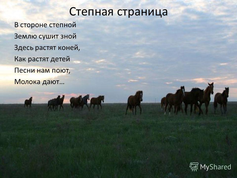 Степная страница В стороне степной Землю сушит зной Здесь растят коней, Как растят детей Песни нам поют, Молока дают…