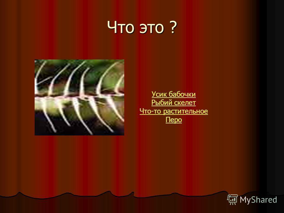 Что это ? Усик бабочки Рыбий скелет Что-то растительное Перо