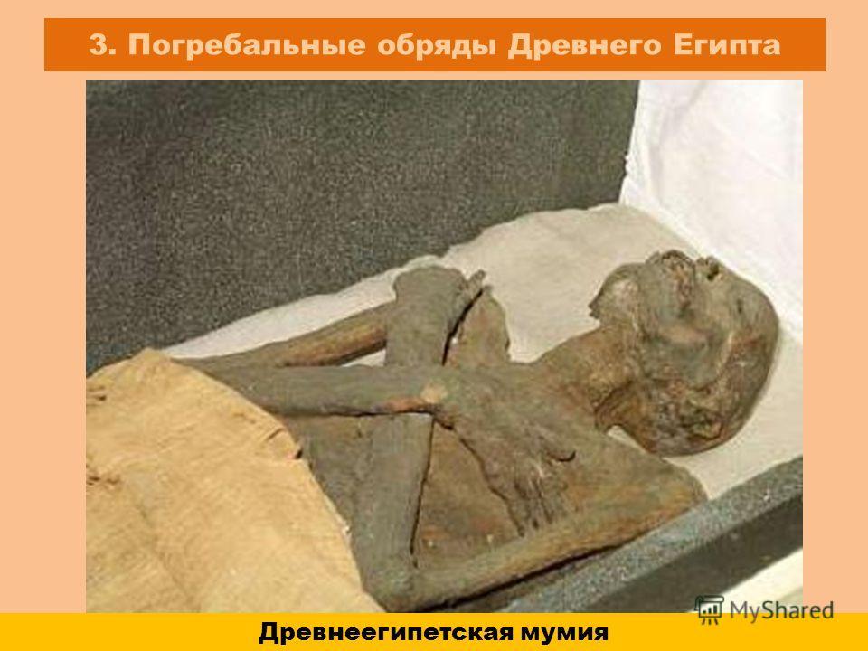 3. Погребальные обряды Древнего Египта Древнеегипетская мумия