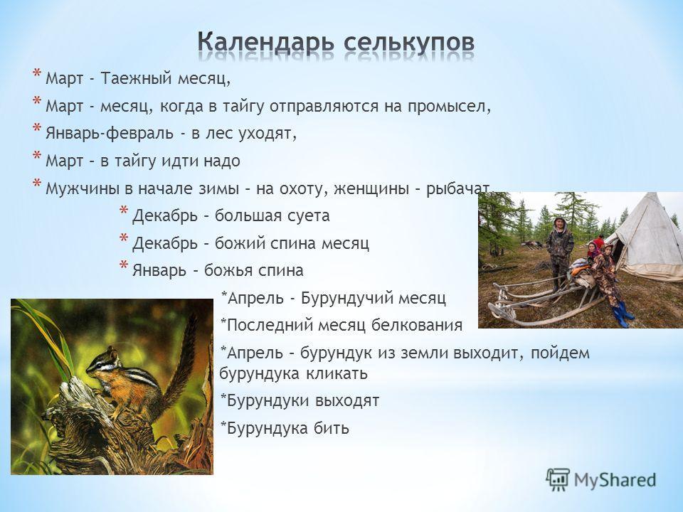 * Март - Таежный месяц, * Март - месяц, когда в тайгу отправляются на промысел, * Январь-февраль - в лес уходят, * Март – в тайгу идти надо * Мужчины в начале зимы – на охоту, женщины – рыбачат. * Декабрь – большая суета * Декабрь – божий спина месяц